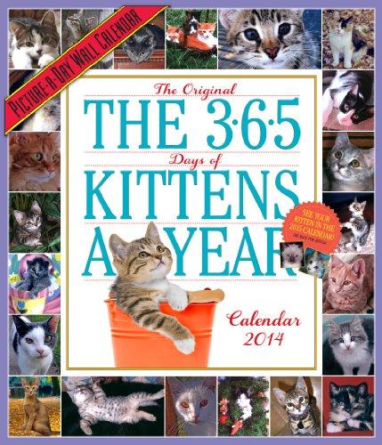 9780761173106: 365 Days Of Kittens-A-Year 2014 Calendar