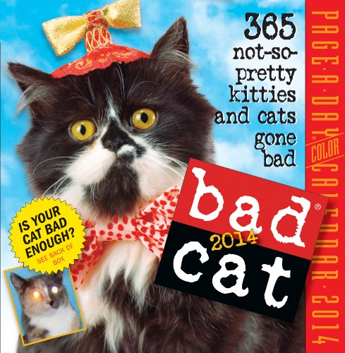 9780761173199: Bad Cat Calendar: 365 Not-So-Pretty Kitties and Cats Gone Bad
