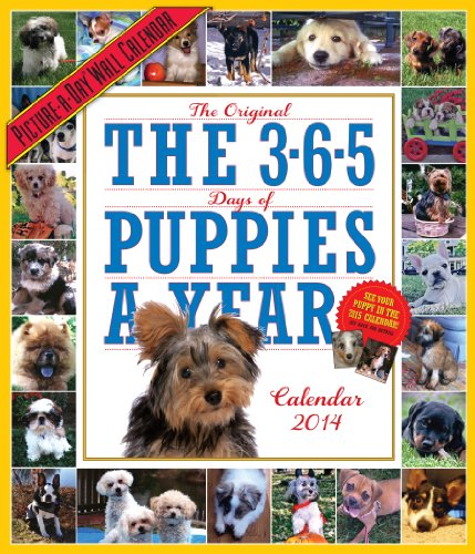 9780761173618: The 365 Puppies-A-Year 2014 Wall Calendar (Picture-A-Day Wall Calendars)
