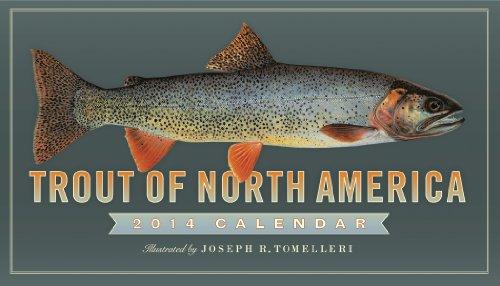 9780761173977: Trout of North America Calendar