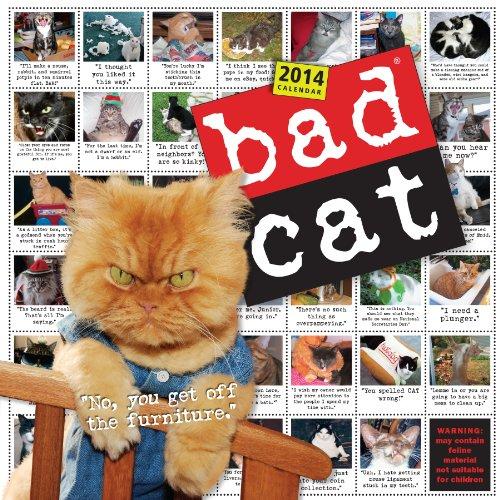 9780761174516: Bad Cat Wall Calendar 2014
