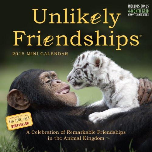 9780761179177: Unlikely Friendships 2015 Mini Calendar