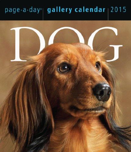 9780761179368: Dog Gallery 2015 Calendar