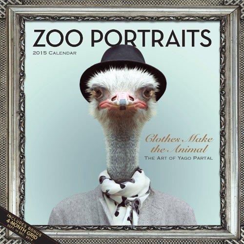 9780761180319: Zoo Portraits 2015 Calendar