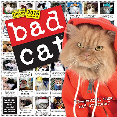 9780761183198: Bad Cat Wall Calendar 2016