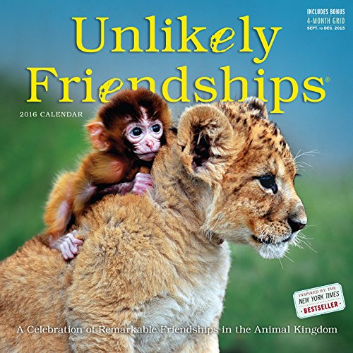 9780761183327: Unlikely Friendships 2016 Calendar