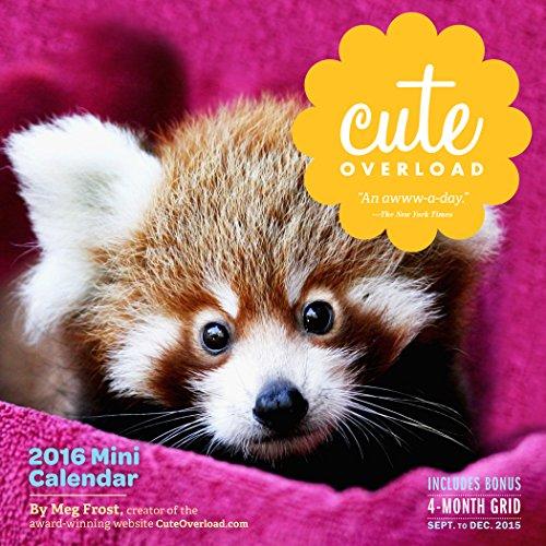9780761183402: Cute Overload Mini Wall Calendar 2016
