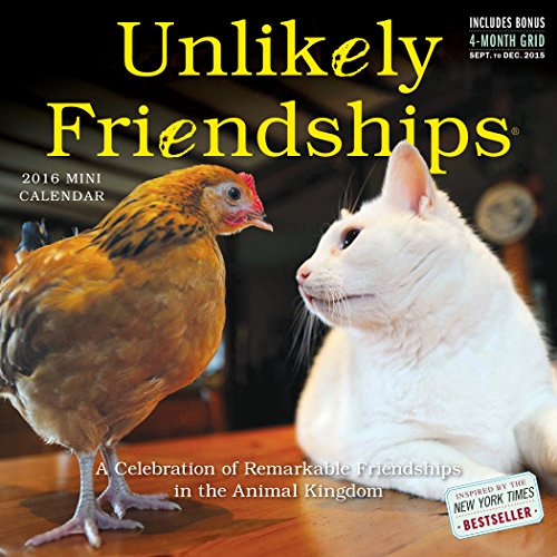 9780761183440: Unlikely Friendships Mini Wall Calendar 2016 (2016 Calendar)
