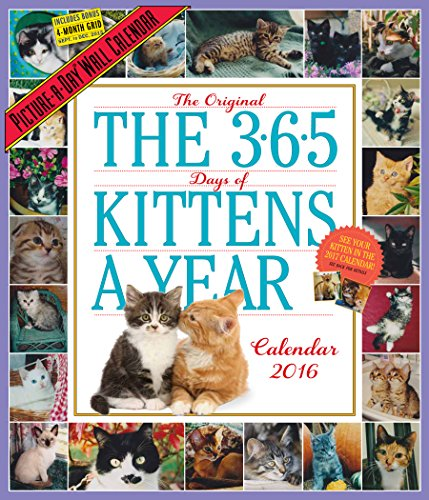 9780761183525: The 365 Kittens-A-Year Picture-A-Day Wall Calendar 2016