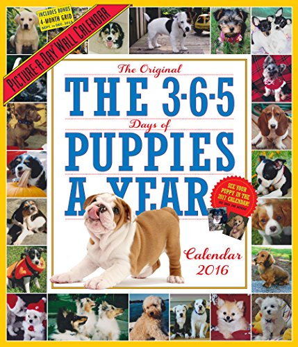 9780761183532: The 365 Puppies-A-Year Picture-A-Day Wall Calendar 2016