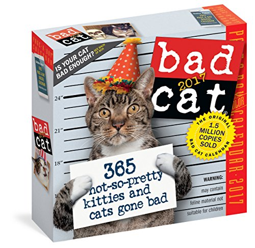 9780761188254: Bad Cat Page-A-Day Calendar 2017