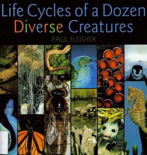 9780761303497: Life Cycles Dozen Diverse Crea