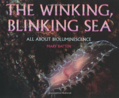 9780761314844: Winking, Blinking Sea