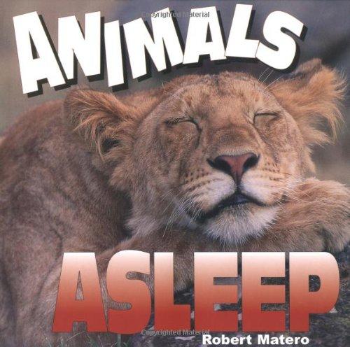 Animals Asleep: Matero, Robert