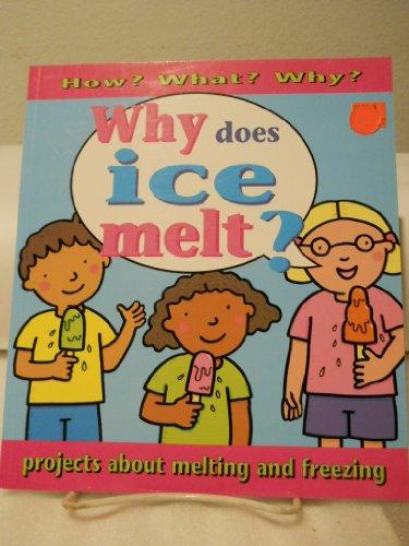 9780761318361: Why Does Ice Melt?