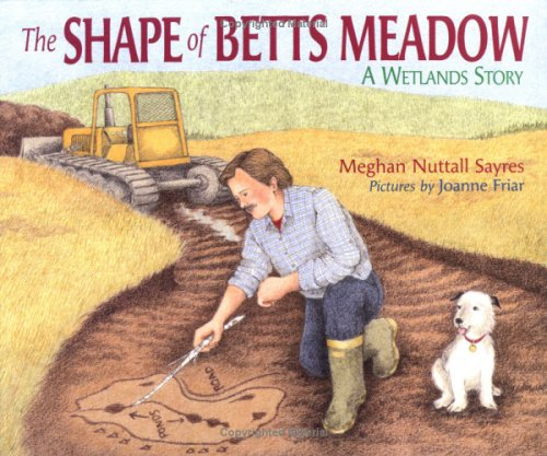 9780761321156: Shape Of Betts Meadow, The