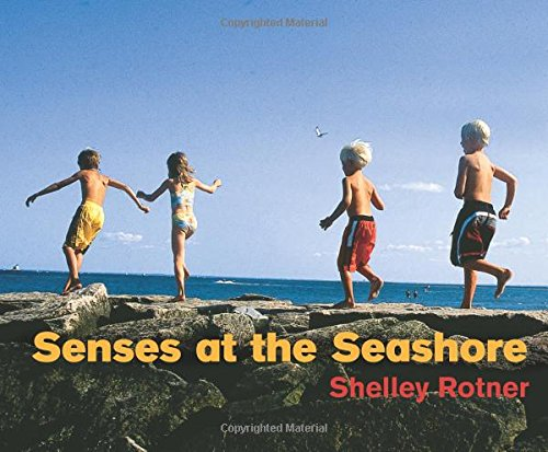 9780761328971: Senses at the Seashore
