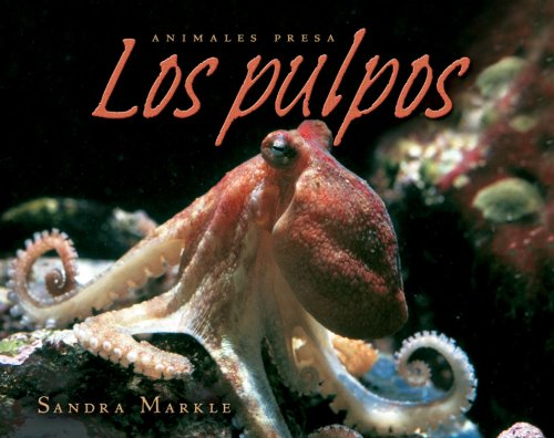 9780761338987: Los Pulpos (Animales Presa) (Spanish Edition)