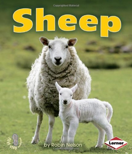 9780761340621: Sheep (First Step Nonfiction)