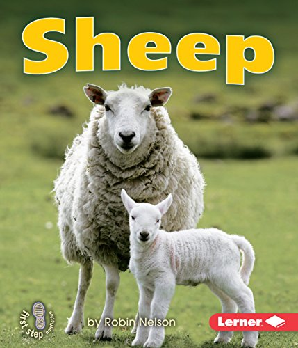 9780761341017: Sheep (First Step Nonfiction Farm Animals)