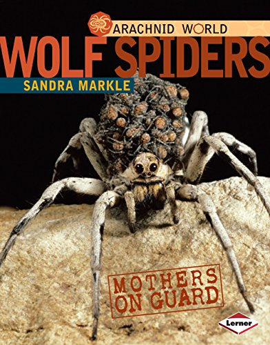 9780761350408: Wolf Spiders: Mothers on Guard (Arachnid World)
