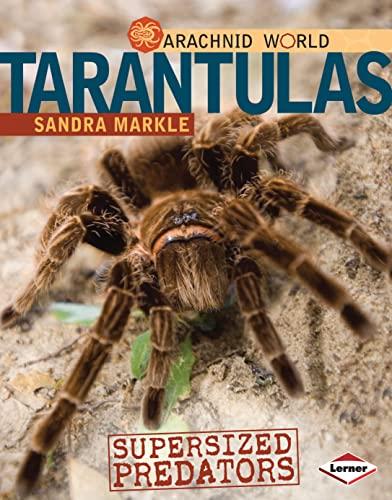 9780761350439: Tarantulas: Supersized Predators (Arachnid World)
