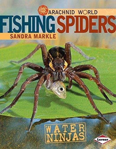 Fishing Spiders: Water Ninjas (Arachnid World) (Arachnid World (Hardcover)): Sandra Markle