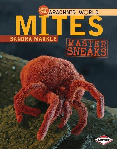 9780761350460: Mites: Master Sneaks (Arachnid World)