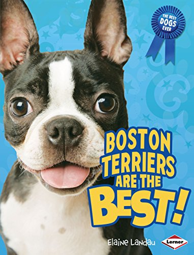 Boston Terriers Are the Best! (Best Dogs Ever): Elaine Landau