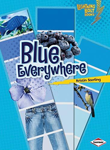 9780761356578: Blue Everywhere (Lightning Bolt Books: Colors Everywhere (Paperback))