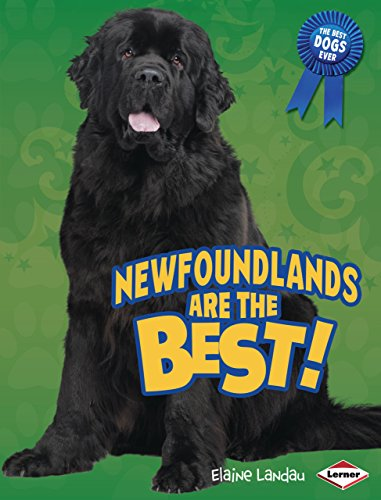 9780761360827: Newfoundlands Are the Best! (Best Dogs Ever)
