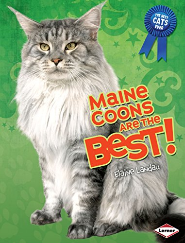 9780761364269: Maine Coons Are the Best! (The Best Cats Ever)