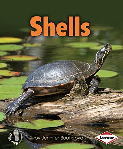 Shells (First Step Nonfiction): Jennifer Boothroyd