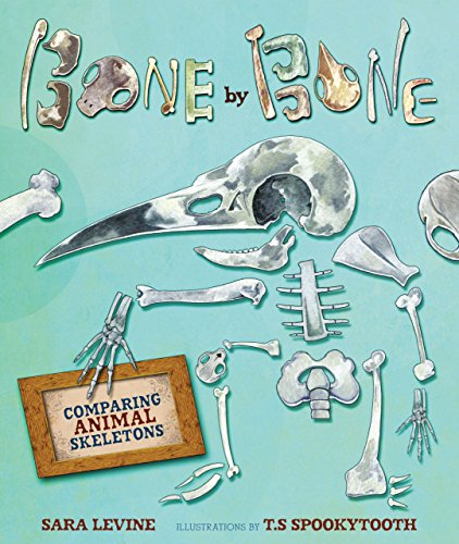 9780761384649: Bone by Bone: Comparing Animal Skeletons