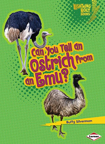 9780761385554: Can You Tell an Ostrich from an Emu? (Lightning Bolt Books ® _ Animal Look-Alikes)
