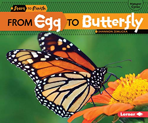 9780761385738: From Egg to Butterfly (Start to Finish: Nature's Cycles)