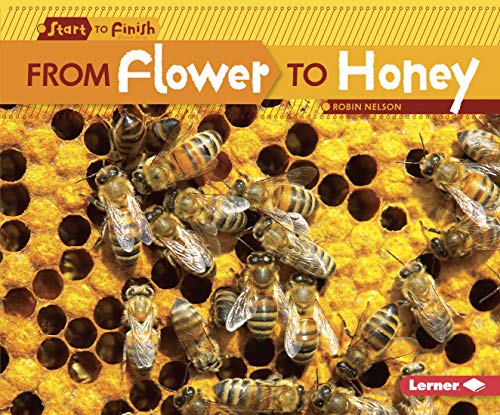 9780761385745: From Flower to Honey (Start to Finish, Second (Paperback))