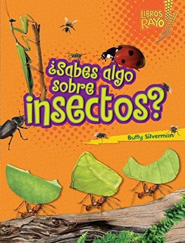 9780761393351: ..Sabes algo sobre insectos?/ Do You Know about Insects? (Libros Rayo - Conoce Los Grupos De Animales /Lightning Bolt Books T - Meet the Animal ... /Lightning Bolt Books Meet the Animal Groups)