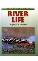 River Life : Deep in the Amazon: James L. Castner