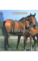 9780761413950: Horses (Perfect Pets)