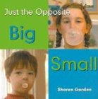 9780761415688: Big/Small (Bookworms: Just the Opposite)