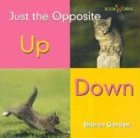 9780761415732: Up/Down (Bookworms: Just the Opposite)