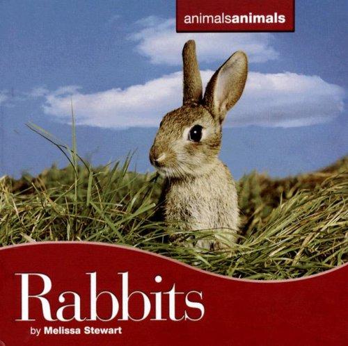 Rabbits (Animals Animals): Stewart, Melissa