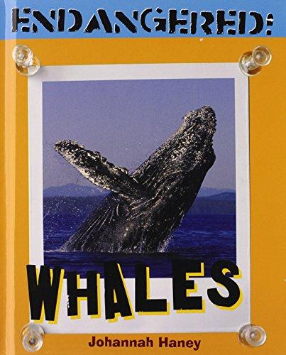 Whales (Endangered!): Johannah Haney