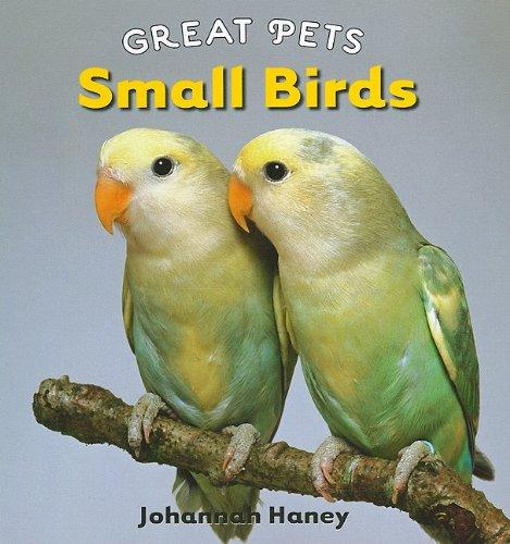 Small Birds (Great Pets): Haney, Johannah