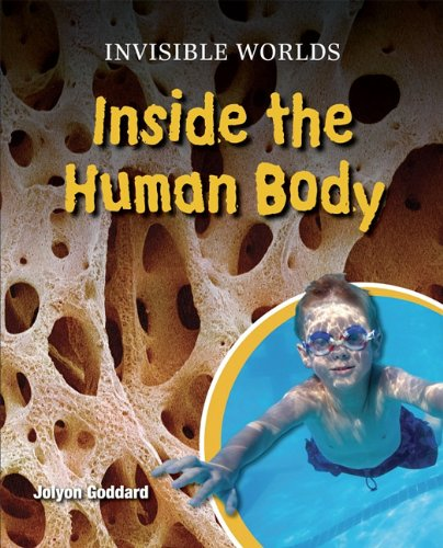 9780761441908: Inside the Human Body (Invisible Worlds)