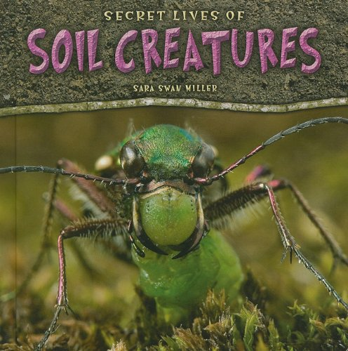 Secret Lives of Soil Creatures: Miller, Sara Swan