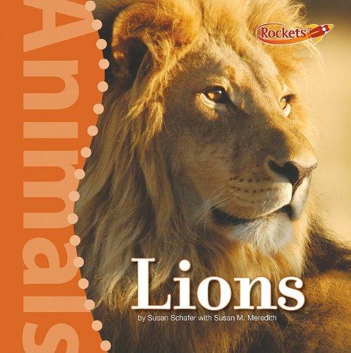 Lions (Animals): Susan Schafer