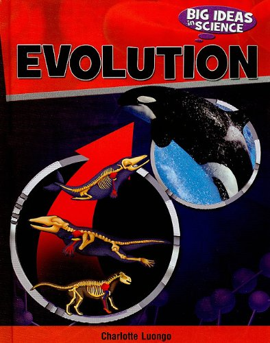 Evolution (Big Ideas in Science): Luongo, Charlotte