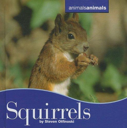 Squirrels (Hardback): Steven Oftinoski